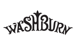 Washburn Authorized Dealer
